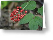 Red Bead Greeting Card