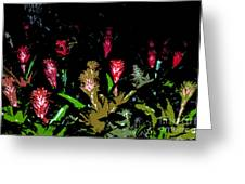 Red Blooms Greeting Card