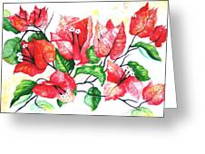 Red Bouganvillia Greeting Card