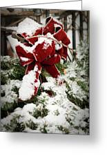 Red Bow On Pine Bough Greeting Card