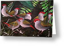 Red-browed Finch Flock Weipa Greeting Card