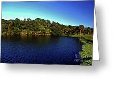 Red Bugg Slough Greeting Card