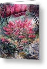 Red Bush Greeting Card