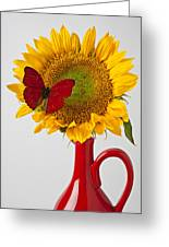 Red Butterfly On Sunflower On Red Pitcher Greeting Card by Garry Gay