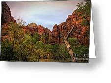 Red Cliffs Mountains Zion National Park Utah Usa Greeting Card