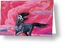 Red Cloud Horse Greeting Card