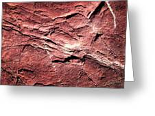 Red Colored Limestone With Grooves Greeting Card