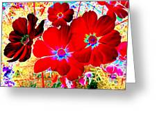 Red Cosmos Greeting Card