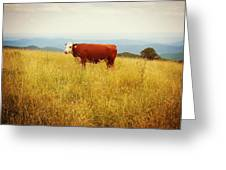 Red Cow On The Blue Ridge Greeting Card