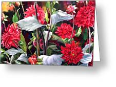 Red Dahlias Greeting Card