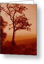 Red Dawn Greeting Card