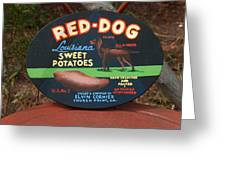 Red Dog Sweet Potatoes Greeting Card
