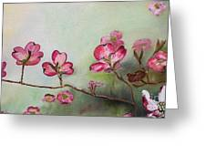 Red Dogwood - Cherokee - Springtime Greeting Card
