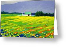 Red Door County Wicklow Greeting Card by John  Nolan