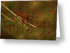 Red Dragonfly Dining Greeting Card