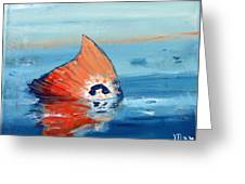 Red Drum Tailing Greeting Card