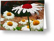 Red Eyed Daisy Greeting Card