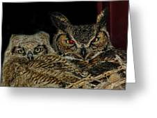 Red Eyed Mama And Baby Horned Owls Greeting Card