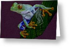 Red Eyed Tree Frog Original Oil Painting 4x6in Greeting Card