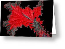 Red Feather - Abstract Greeting Card