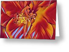 Red Flame Hibiscus Greeting Card