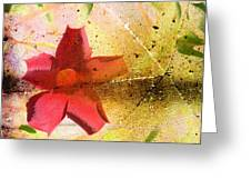 Red Floral Grunge Greeting Card