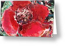 Red Flower, Greeting Card