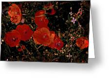 Red Flowers 6 Greeting Card