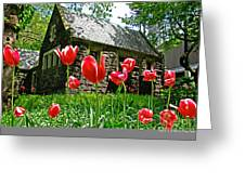 Red Flowers In Central Park Greeting Card