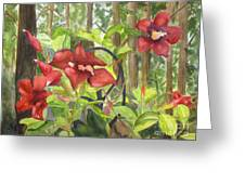 Red Flowers On The Deck Greeting Card