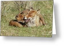 Red Fox Cub Love Greeting Card
