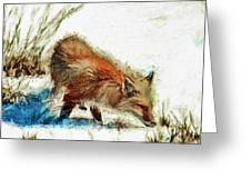 Red Fox Painted Series Greeting Card