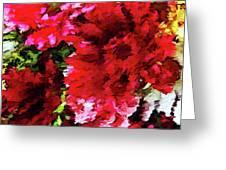 Red Gerbera Daisy Abstract Greeting Card