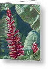 Red Ginger Greeting Card