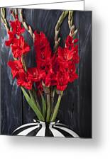 Red Gladiolus In Striped Vase Greeting Card