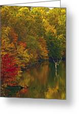 Red Gold And Green Greeting Card