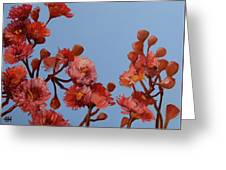 Red Gum Blossoms Australian Flowers Oil Painting Greeting Card