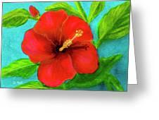 Red Hawaii Hibiscus #238  Greeting Card