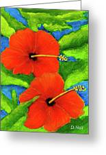 Red Hawaii Hibiscus Flower #267 Greeting Card