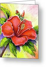 Red Hawaii Hibiscus Flower #301 Greeting Card