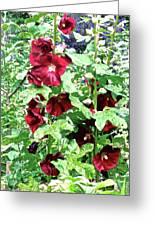 Red Hollyhocks Greeting Card