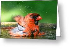 Red Hot Bath Greeting Card