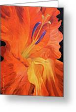 Red-hot Flower Greeting Card