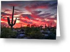 Red Hot Sonoran  Greeting Card