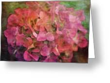 Red Hydrangea 2421 Idp_2 Greeting Card