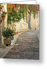 Red Ivy And Steps In Assisi Italy Greeting Card