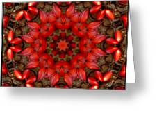 Red Kaleidoscope No. 1 Greeting Card