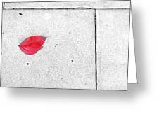 Red Leaf Greeting Card by Silvia Ganora
