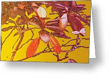 Red Leaves Gold Sunset Greeting Card