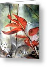 Red Leaves In Morning Mist Greeting Card